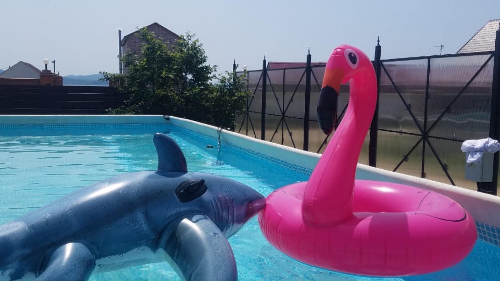 Автотур в Волчанец база Фламинго